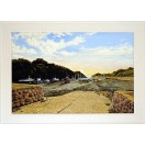 Watermouth Cove, Summer Evening  SOLD