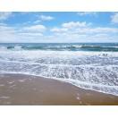 Warm Sand & Gentle Surf - SOLD