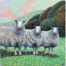 Exmoor Sheep SOLD