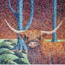 Longhorn Cattle  SOLD