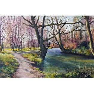River Caen - Braunton