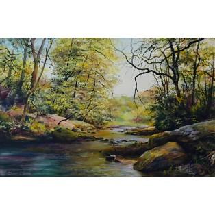 River Lynn - Lynmouth