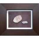 Ilfracombe Pebbles SOLD