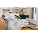 Lazy hare
